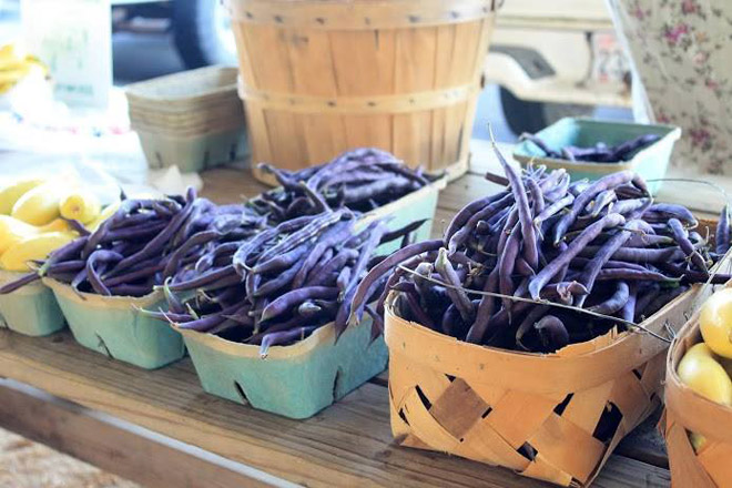 DeKalb County Farmers Market