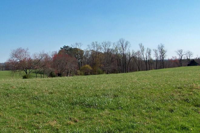 Lookout Creek Farm