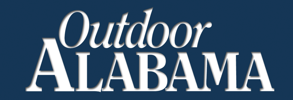 Fishing visit lookout mountain for Alabama outdoors fishing license