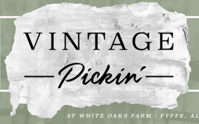 Fall Vintage Pickin Barn Sale