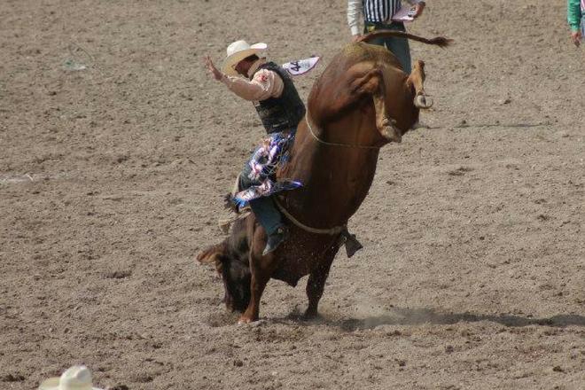 PBR Bull Bash 2018