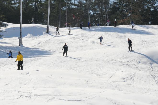 Ski Bama
