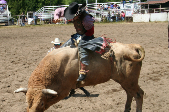 Shrine Rodeo at the Agri Business Center