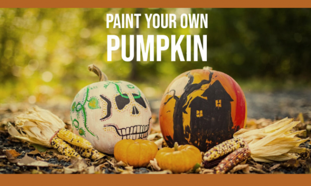 Paint Your Own Pumpkin at Boxed Leaf Co