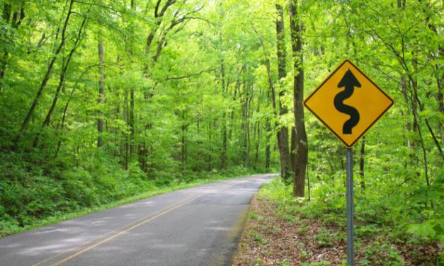 Go Climb a Mountain…Lookout Mountain in Alabama