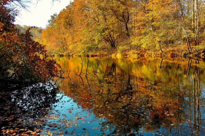 Little River Canyon Creek in Fall.