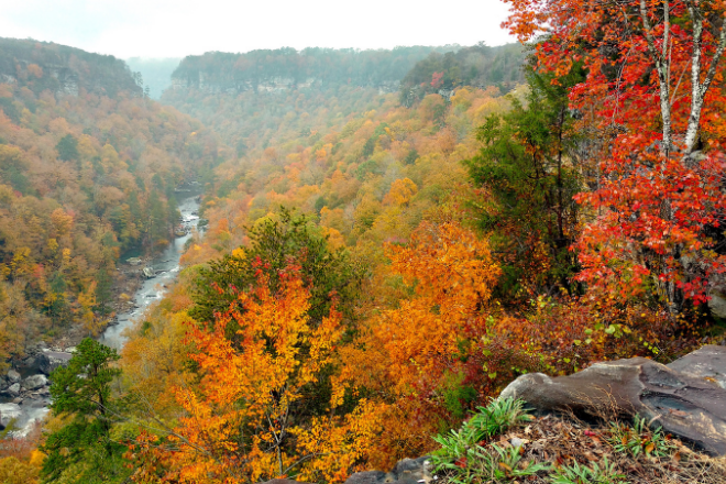 Little River Canyon National Preserve Overlook in Fall